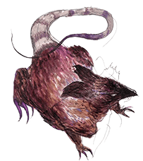 Summoned Creature: Dire Rat