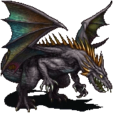 Mature Adult Black Dragon